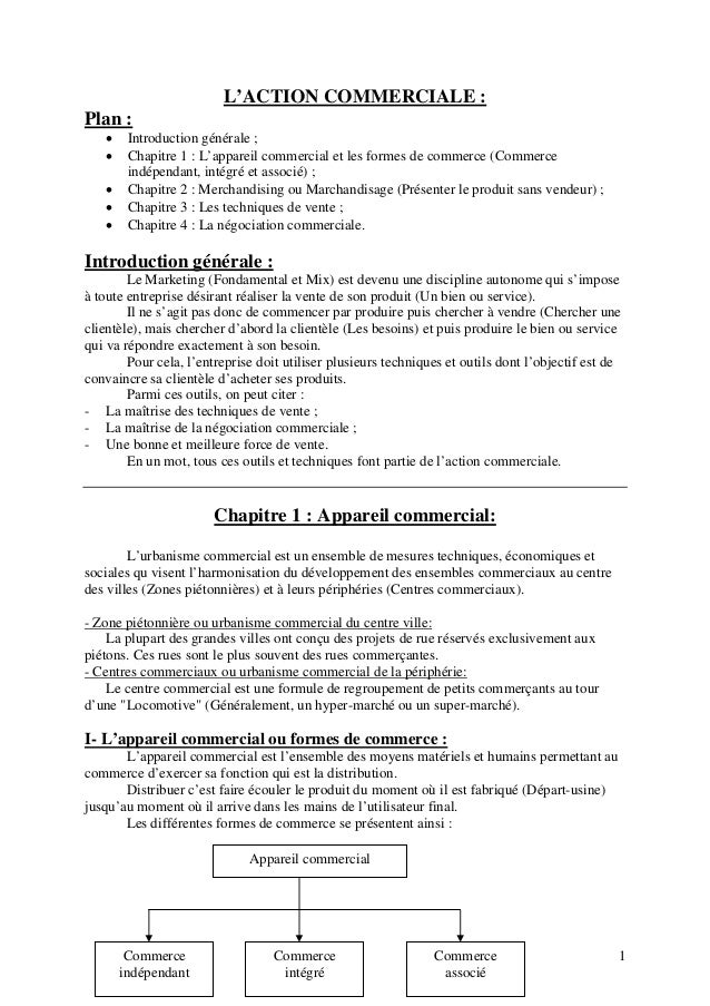 1  L'ACTION COMMERCIALE :  Plan :   Introduction générale ;   Chapitre 1 : L'appareil commercial et les formes de commer...