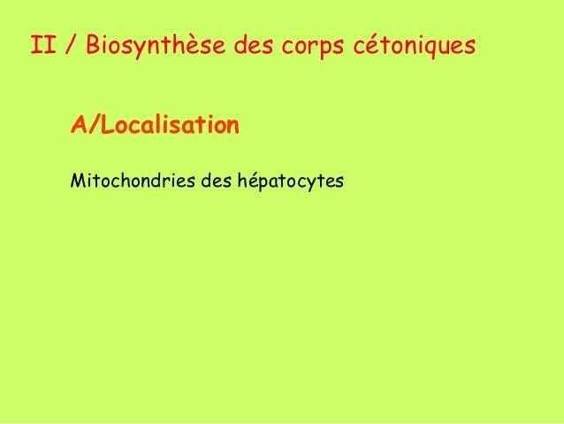 Cours  cetogenese + cholestérol Slide 3