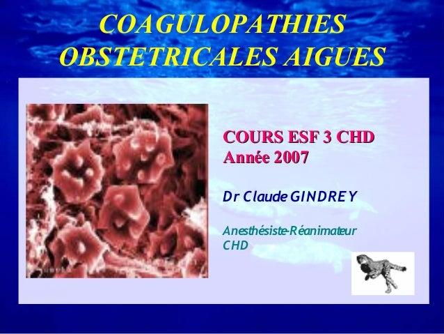 COAGULOPATHIES OBSTETRICALES AIGUES COURS ESF 3 CHD Année 2007 Dr Claude GI NDREY Anesthésiste-Réanimateur CH D