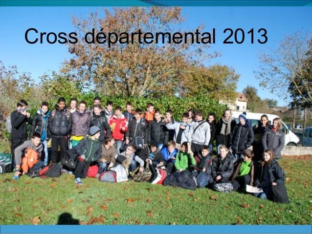 Cross départemental 2013
