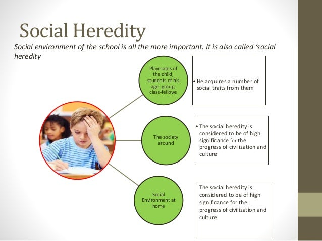 social heredity