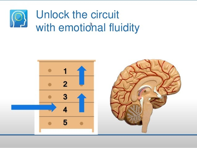 Unlock the circuit 3 with emotional fluidity  1 2 3 4  5