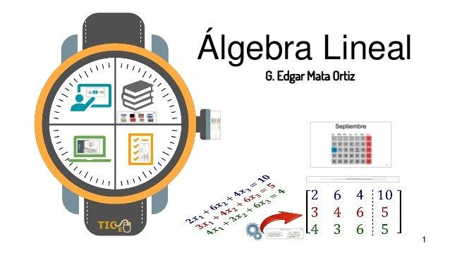 1 Álgebra Lineal G. Edgar Mata Ortiz