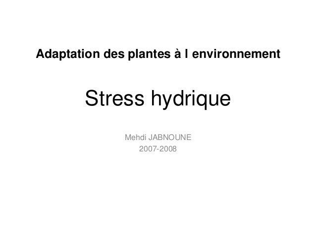 Stress hydrique Mehdi JABNOUNE 2007-2008 Adaptation des plantes à l environnement