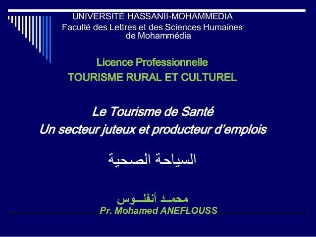 UNIVERSITÉ HASSANII-MOHAMMEDIA Faculté des Lettres et des Sciences Humaines de Mohammédia Licence Professionnelle TOURISME...