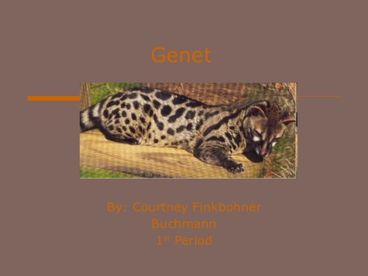 Genet By: Courtney Finkbohner Buchmann 1 st  Period