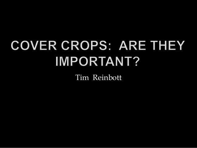 Tim Reinbott