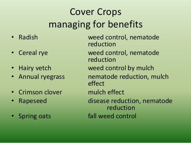 weed control management in crop production essay Project methods timing of weed control is critical for obtaining maximum weed control and minimal crop yield loss use of soil-applied residual herbicides (ppi or pre) requires additional time in the field and increased production costs.