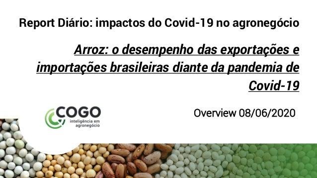 Report Diário: impactos do Covid-19 no agronegócio Arroz: o desempenho das exportações e importações brasileiras diante da...