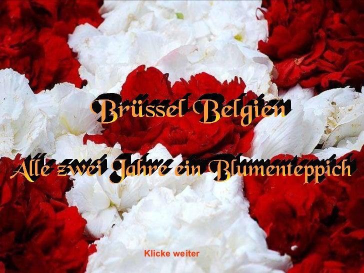 Brüssel Belgien Alle zwei Jahre ein Blumenteppich Klicke weiter