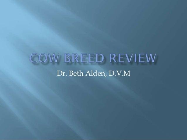 Dr. Beth Alden, D.V.M