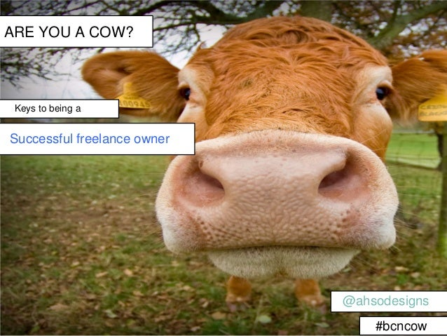 ARE YOU A COW? Keys to being aSuccessful freelance owner                             @ahsodesigns                         ...