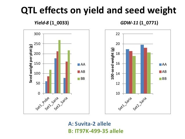 QTL effects on yield and seed weight Yield-8 (1_0033) A: Suvita-2 allele B: IT97K-499-35 allele 0 50 100 150 200 250 300 S...