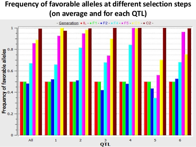 Frequency of favorable alleles at different selection steps (on average and for each QTL)