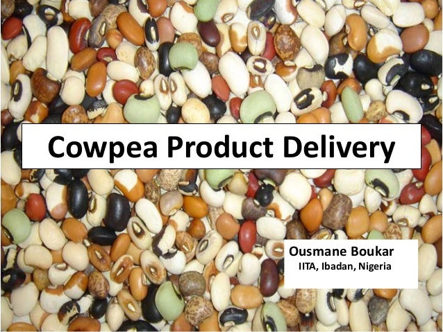 Cowpea Product Delivery Ousmane Boukar IITA, Ibadan, Nigeria