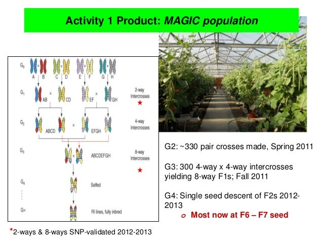 TLM III: Improve cowpea productivity for marginal  environments in sub-Saharan Africa – O Boukar Slide 3