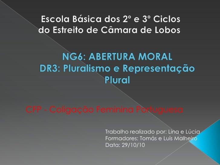 Escola Básica dos 2º e 3º Ciclos do Estreito de Câmara de Lobos<br />NG6: ABERTURA MORALDR3: Pluralismo e Representação Pl...