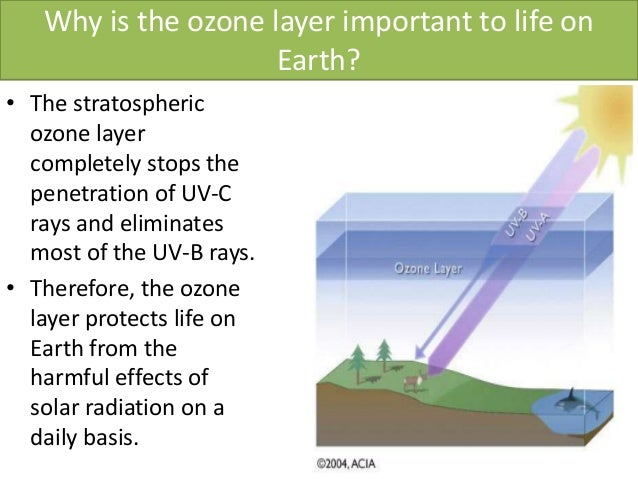 an overview of the potential effects of a depleted ozone layer Essay the potential effects of a depleted ozone layer - detrykowski and god said, let there be light and there was light and then god saw the light, that it was good  ( genesis 1: 3-4 ).