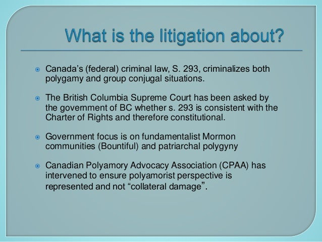 CPAA presentation10 23 2010 Slide 3