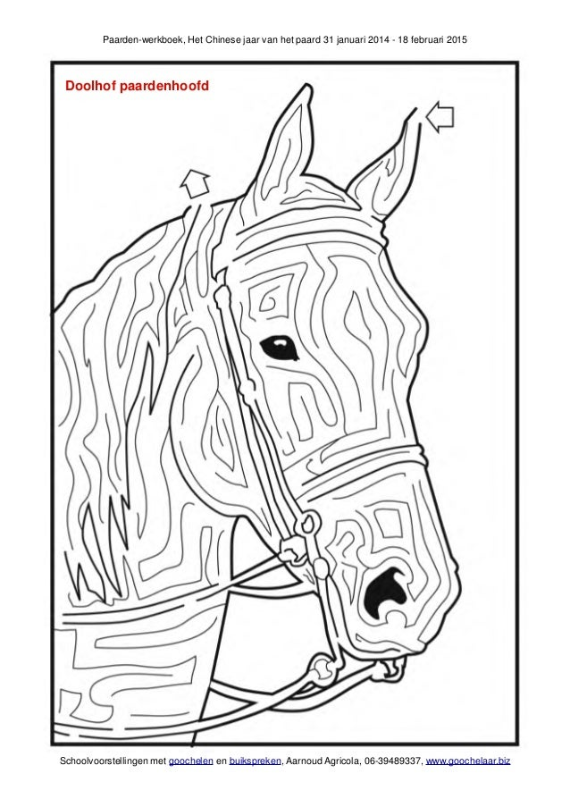 Paarden Werkboek Schoolgoochelaar Aarnoud Agricola