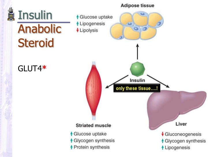 steroid use in alcoholic liver disease