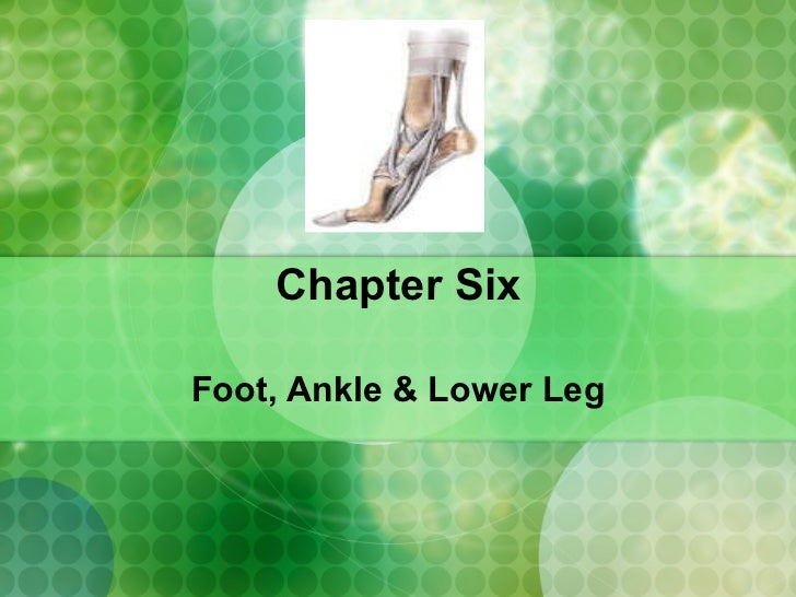 Chapter Six Foot, Ankle & Lower Leg