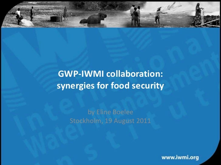 GWP-IWMI collaboration: synergies for food securityby Eline BoeleeStockholm, 19 August 2011<br />