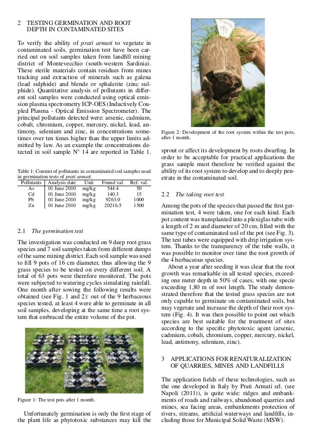 2 TESTING GERMINATION AND ROOT DEPTH IN CONTAMINATED SITES To verify the ability of prati armati to vegetate in contaminat...