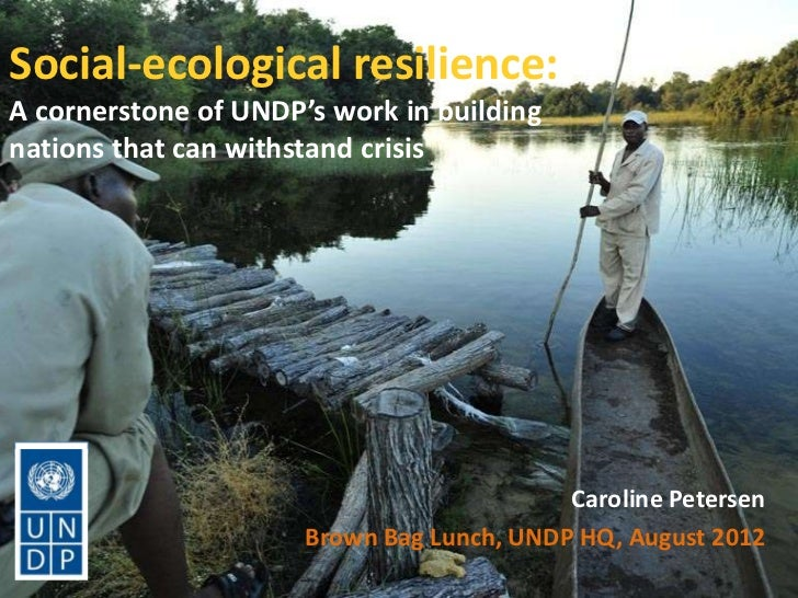 Social-ecological resilience:A cornerstone of UNDP's work in buildingnations that can withstand crisis                    ...