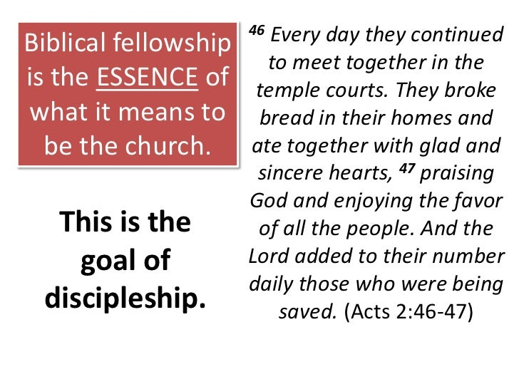 PRINCIPLE NO. 7<br />Discipleship is the purpose of all true fellowship.<br />PRINCIPLE NO. 8<br />Without accountability ...