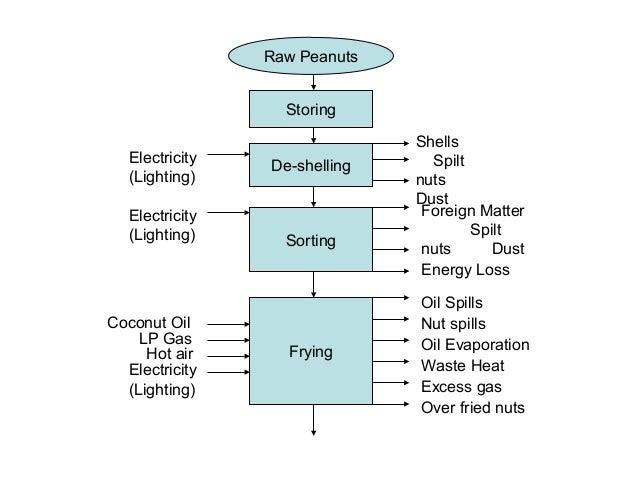 Shells Spilt nuts Dust Oil Spills Nut spills Oil Evaporation Waste Heat Excess gas Over fried nuts Storing Raw Peanuts De-...