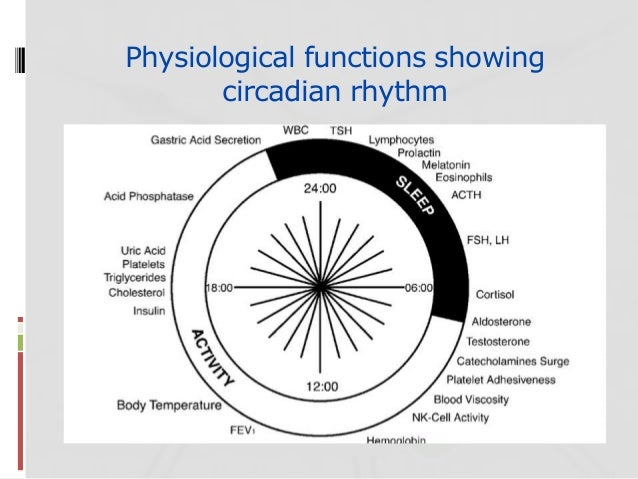 consequences disrupting biological rhythms essay Learn about your circadian rhythm it's your own biological clock called your circadian rhythm consequences of continued disruption of the circadian rhythm an occasional interruption of your circadian rhythm can be tolerated.