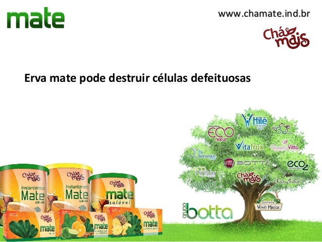 www.chamate.ind.brErva mate pode destruir células defeituosas