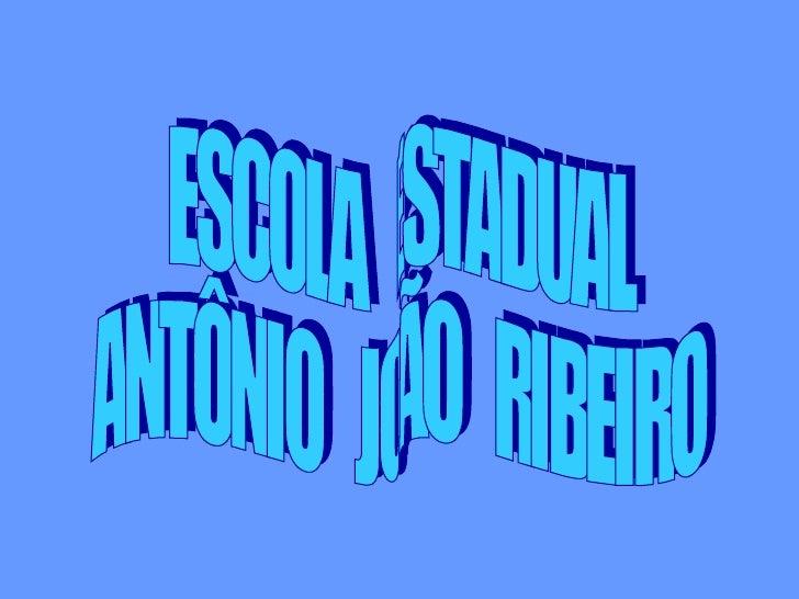 ESCOLA  ESTADUAL  ANTÔNIO  JOÃO  RIBEIRO