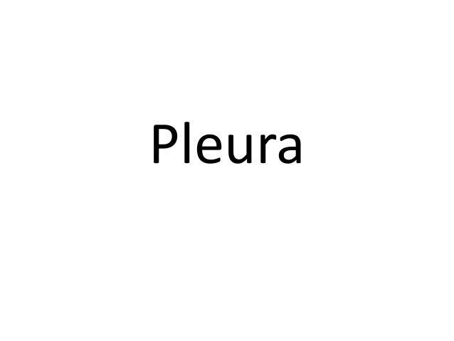 Pleura