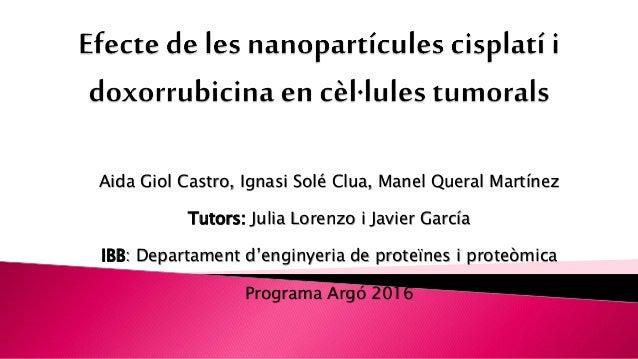 Aida Giol Castro, Ignasi Solé Clua, Manel Queral Martínez Tutors: Julia Lorenzo i Javier García IBB: Departament d'enginye...