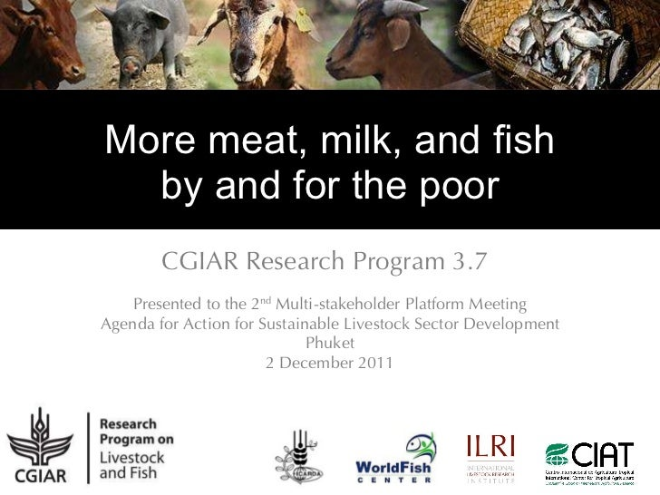 More meat, milk, and fish by and for the poor CGIAR Research Program 3.7 Presented to the 2 nd  Multi-stakeholder Platform...