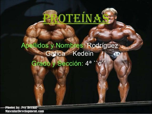 proteínas Apellidos y Nombres: Rodríguez Gatica Kedein Grado y Sección: 4ª ``c´´