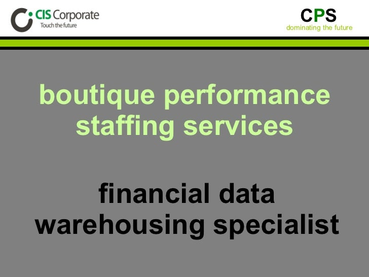 boutique performance staffing services financial data warehousing specialist