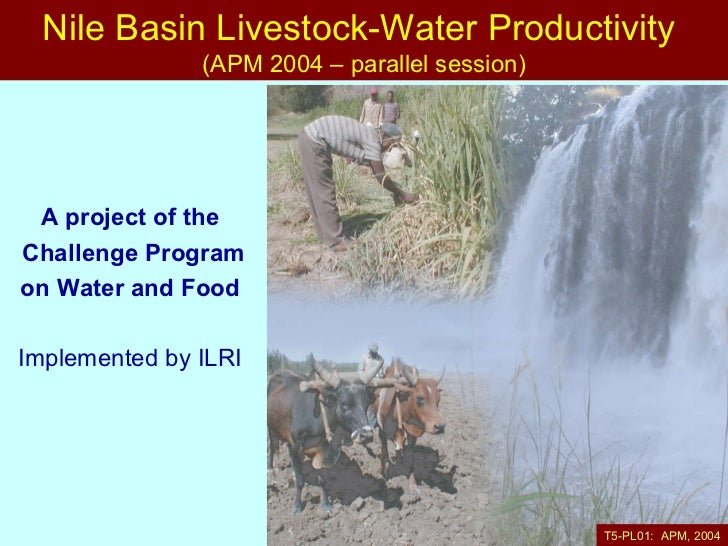 A project of the  Challenge Program on Water and Food   Implemented by ILRI   Nile Basin Livestock-Water Productivity  (AP...