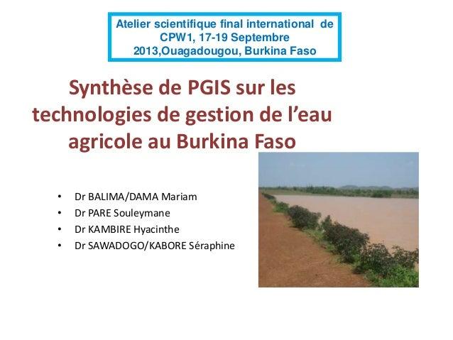 Synthèse de PGIS sur les technologies de gestion de l'eau agricole au Burkina Faso • Dr BALIMA/DAMA Mariam • Dr PARE Soule...