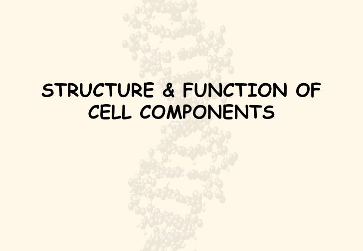 STRUCTURE & FUNCTION OF CELL COMPONENTS