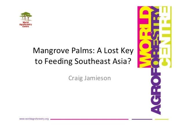 Craig jamieson-icraf-mangrove palms- a-lost-key2 feedingsoutheastasia