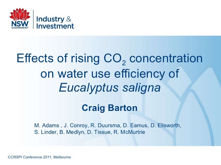 Effects of rising CO 2  concentration on water use efficiency of  Eucalyptus saligna Craig Barton M. Adams , J. Conroy, R....
