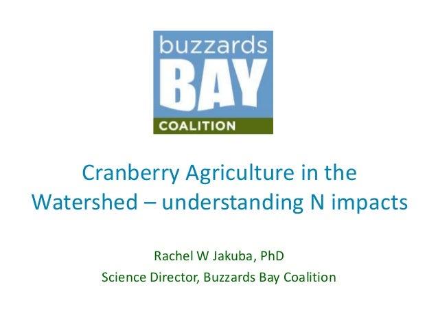 Cranberry Agriculture in theWatershed – understanding N impacts              Rachel W Jakuba, PhD      Science Director, B...