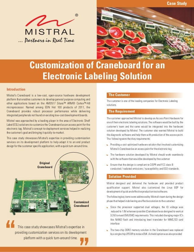This case study showcases Mistral's expertise inproviding customization services on its developmentplatform with a quick t...