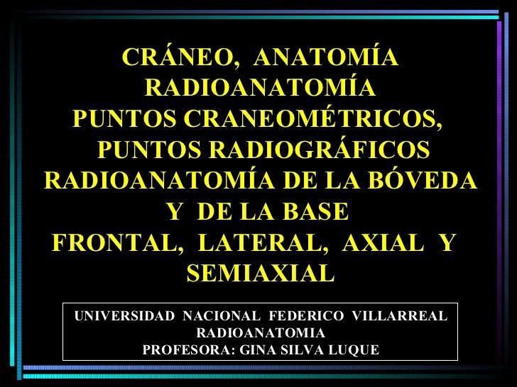 UNIVERSIDAD  NACIONAL  FEDERICO  VILLARREAL RADIOANATOMIA PROFESORA: GINA SILVA LUQUE CRÁNEO,  ANATOMÍA   RADIOANATOMÍA PU...