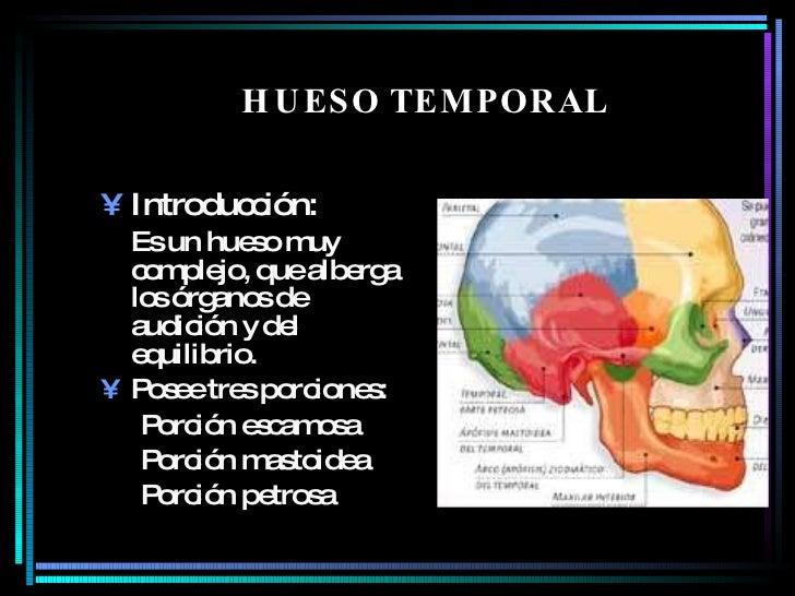 HUESO TEMPORAL   <ul><li>Introducción: </li></ul><ul><li>Es un hueso muy complejo, que alberga los órganos de audición y d...