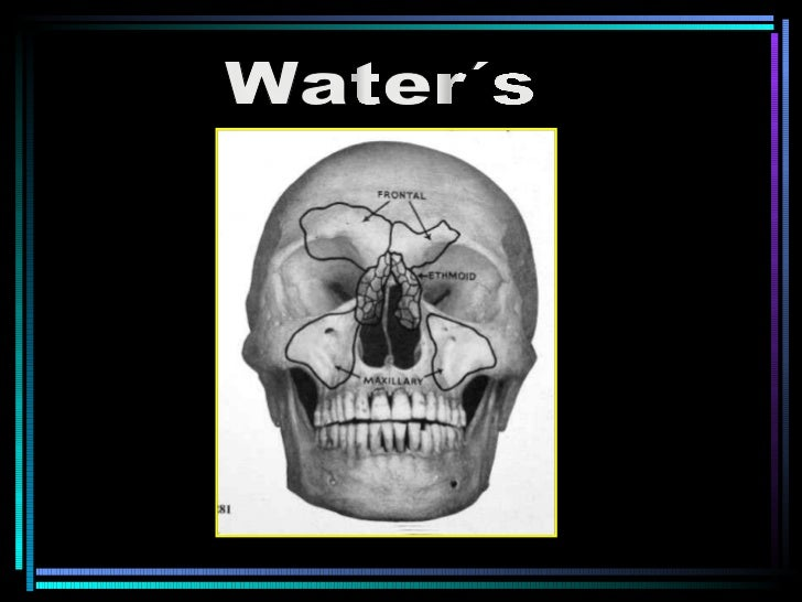 Water´s