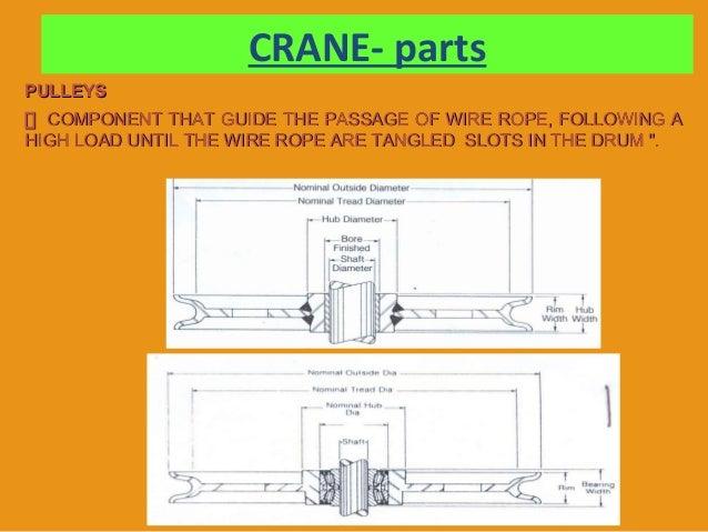 Cranes -